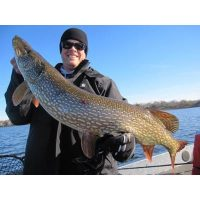 Giant St. Croix River Northern pike!