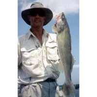 Nice super high water Mississippi Walleye caught on a rapala near a wing dam.