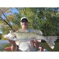 one of over 60 walleyes we caught that day on the Mississippi River in 2011