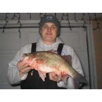 Long time good friend of Josh, Jerry Novak, with a giant 3lb 10oz white bas