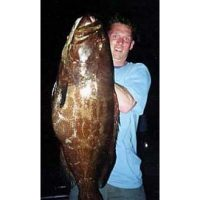 Giant Black Grouper caught in Mexico