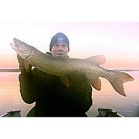 Musky caught late in the year